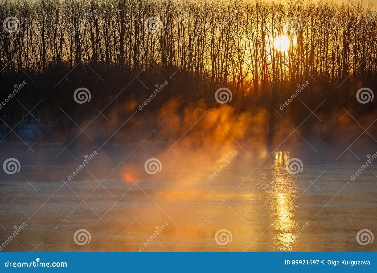Туман утра над рекой весны Центральная Россия, Дон