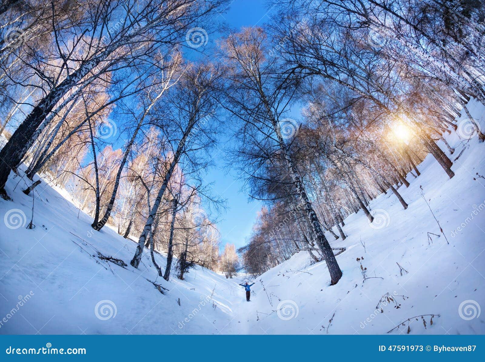 Турист в birchwood зимы