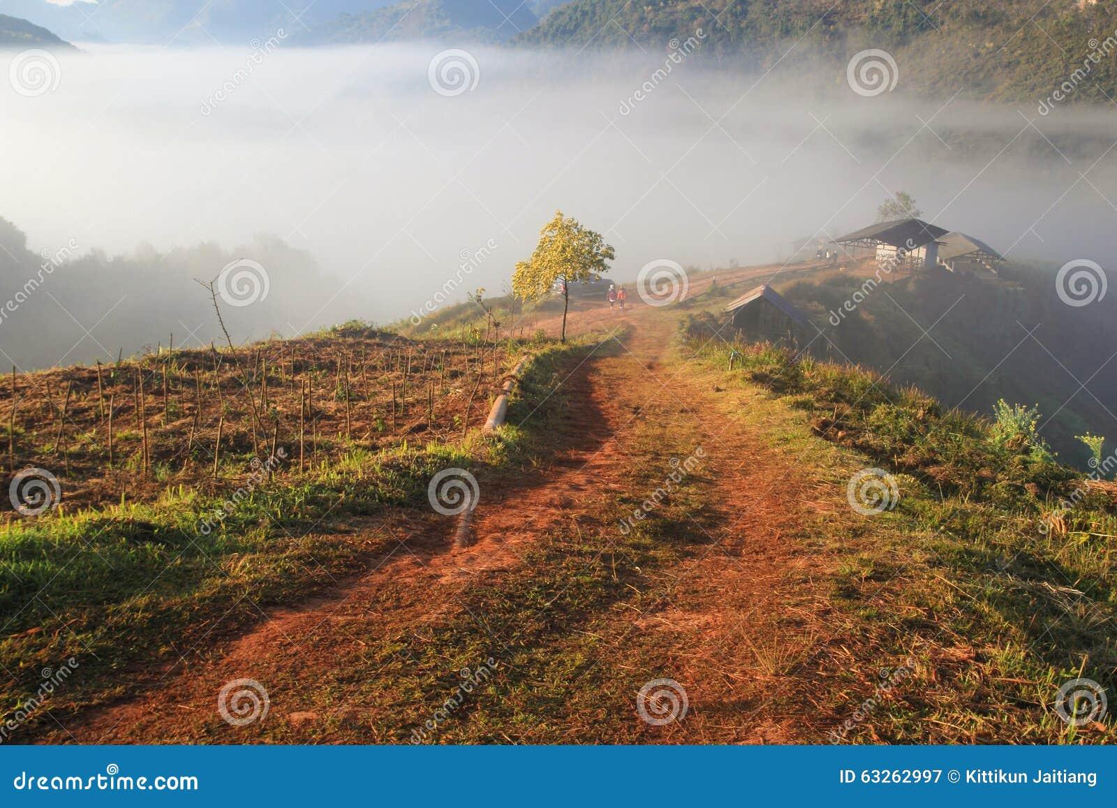 Турист плантации чая