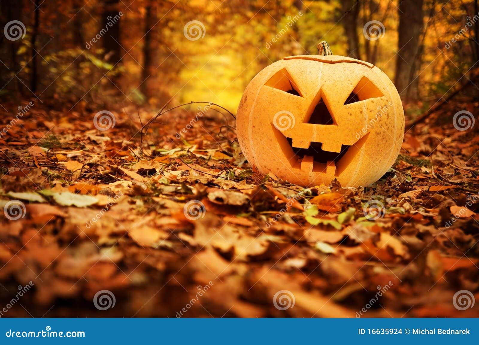тыква halloween пущи осени