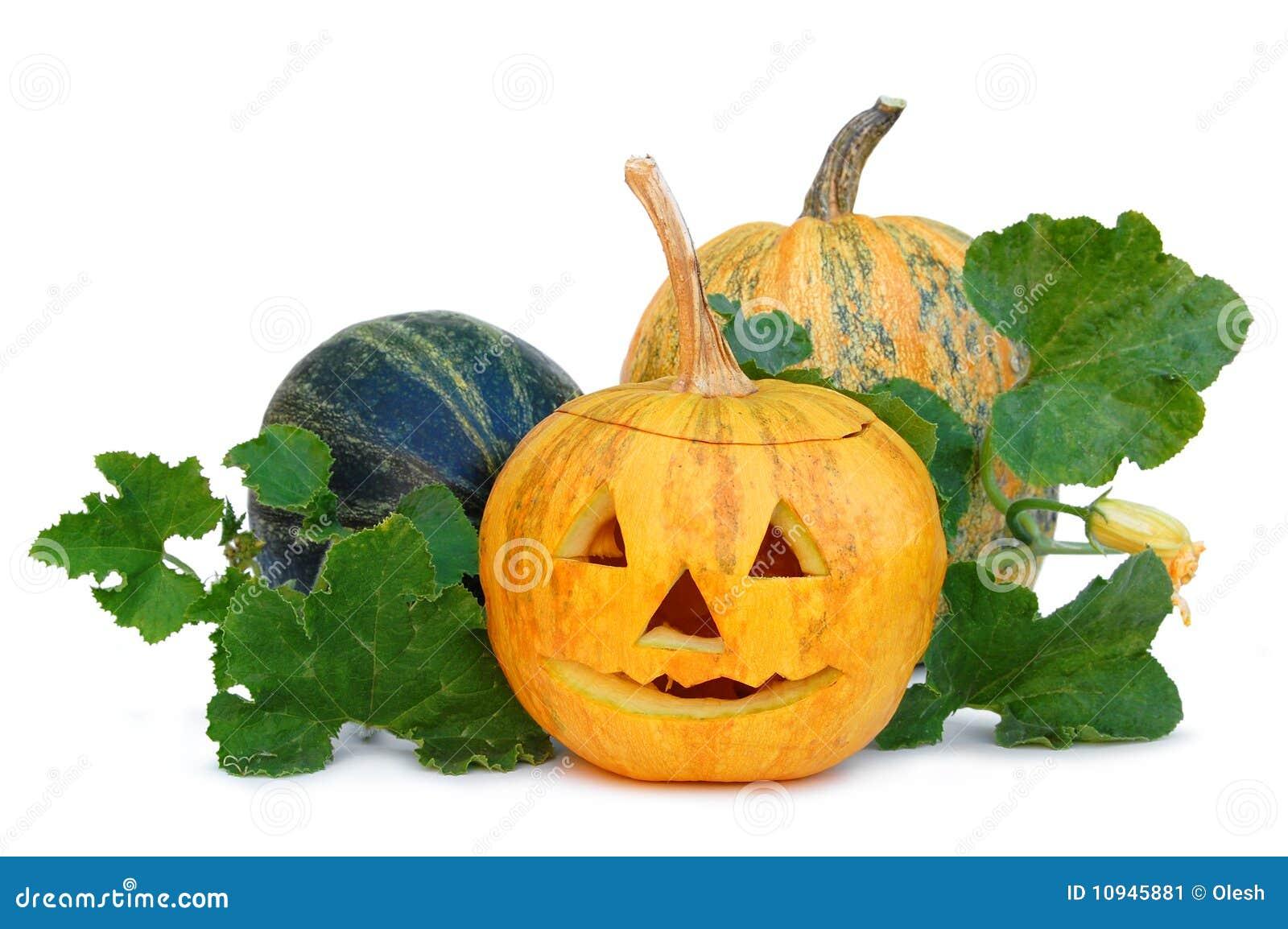 тыква halloween