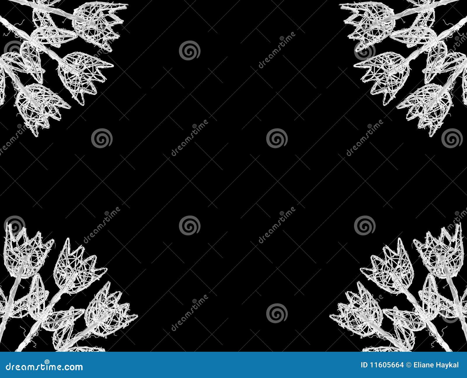 тюльпаны рамки белые