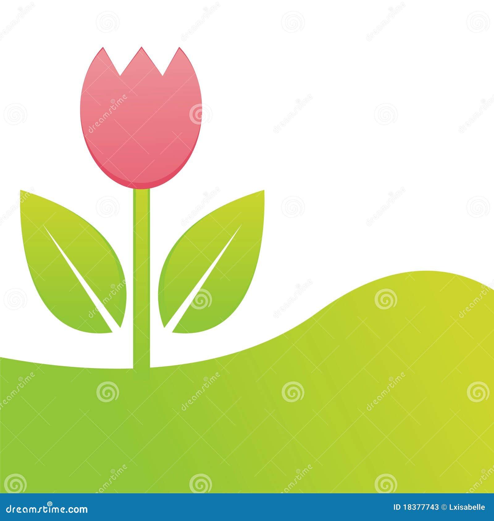 тюльпан весны предпосылки
