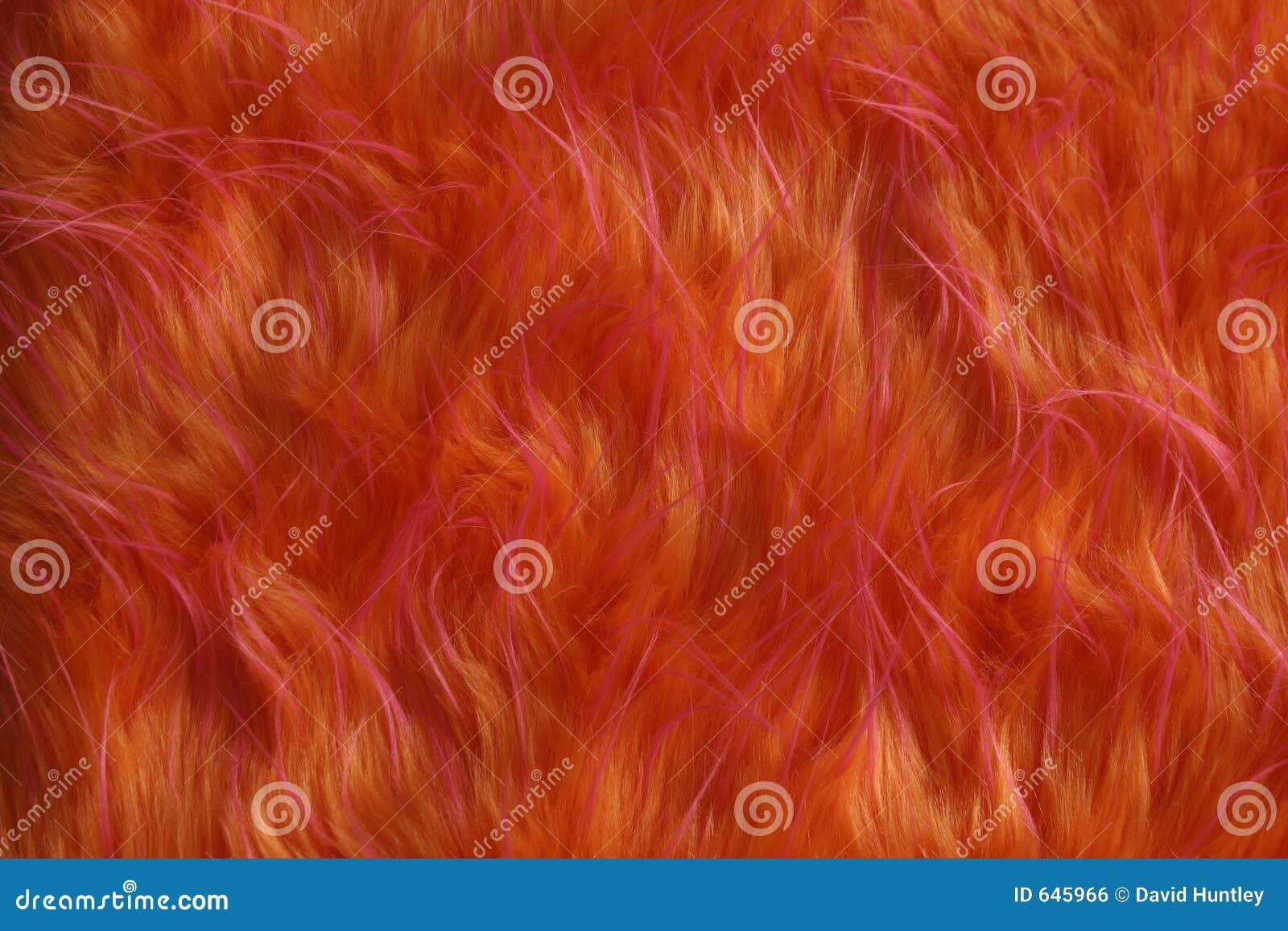 Download удваивает тон шерсти одичалый Стоковое Фото - изображение насчитывающей легко, текстура: 645966