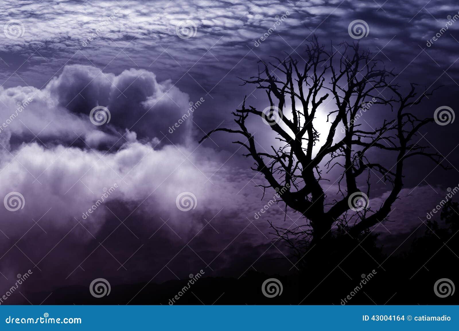 Уединённая фантазия дерева