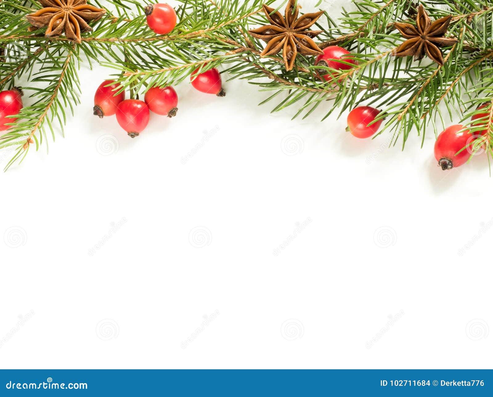 Украшения на белой предпосылке, плоды шиповника рождества ягод, звезды, ель разветвляют скопируйте космос