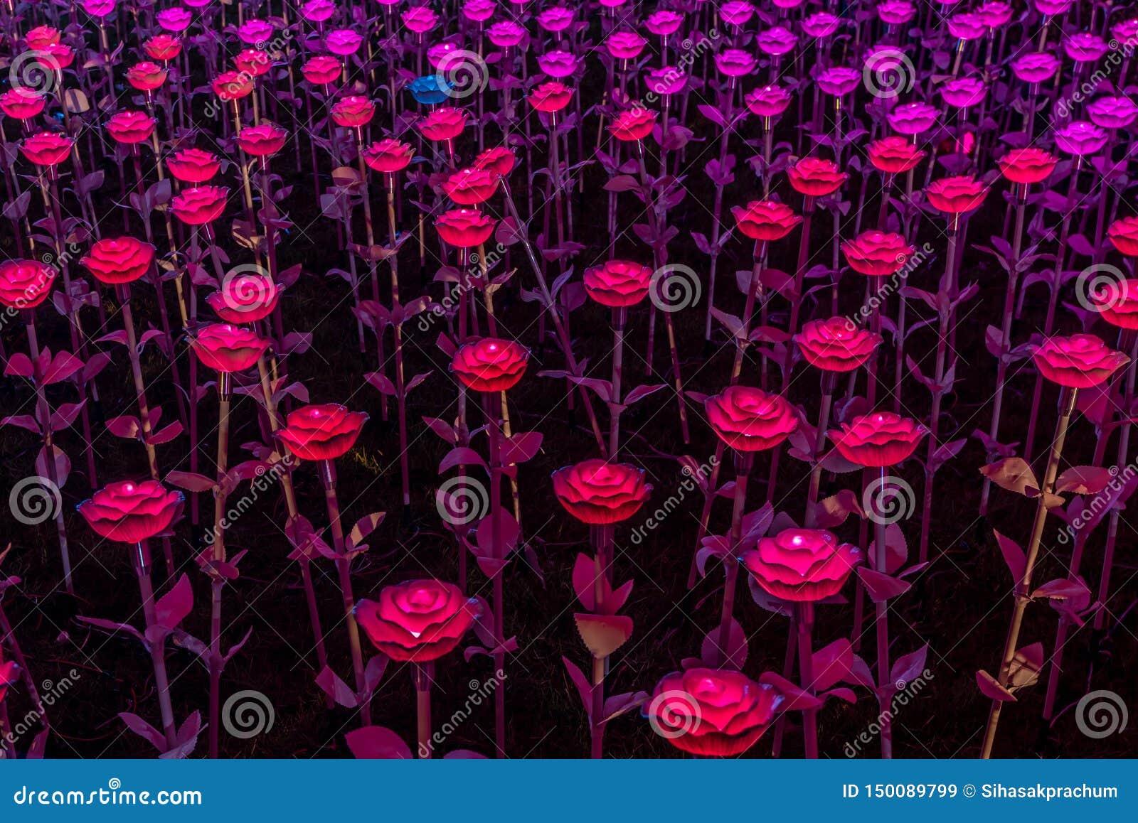 Украшения света СИД цветков в Бангкоке для того чтобы отпраздновать коронование короля Rama x