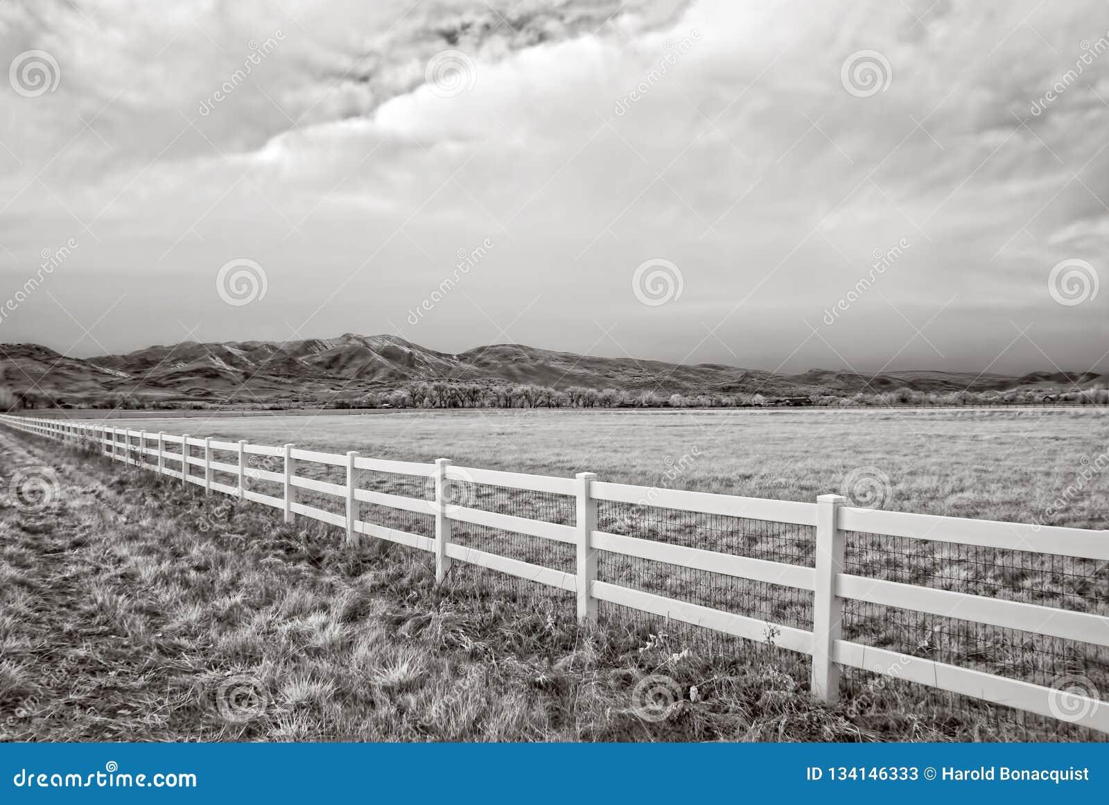 Ультракрасное изображение поля зимы вне Больдэра, Колорадо