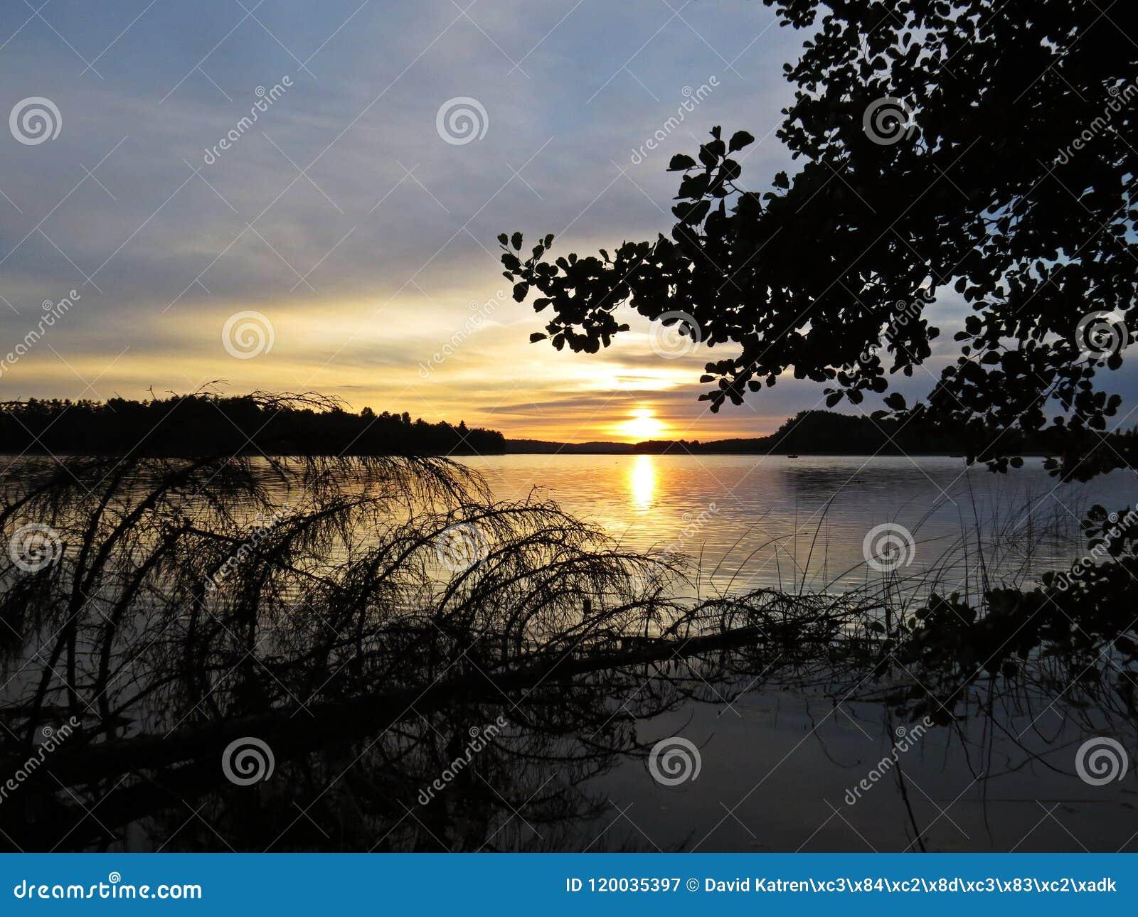 Упаденное отражение дерева в воде во время захода солнца над красивым озером с облачным небом в предпосылке