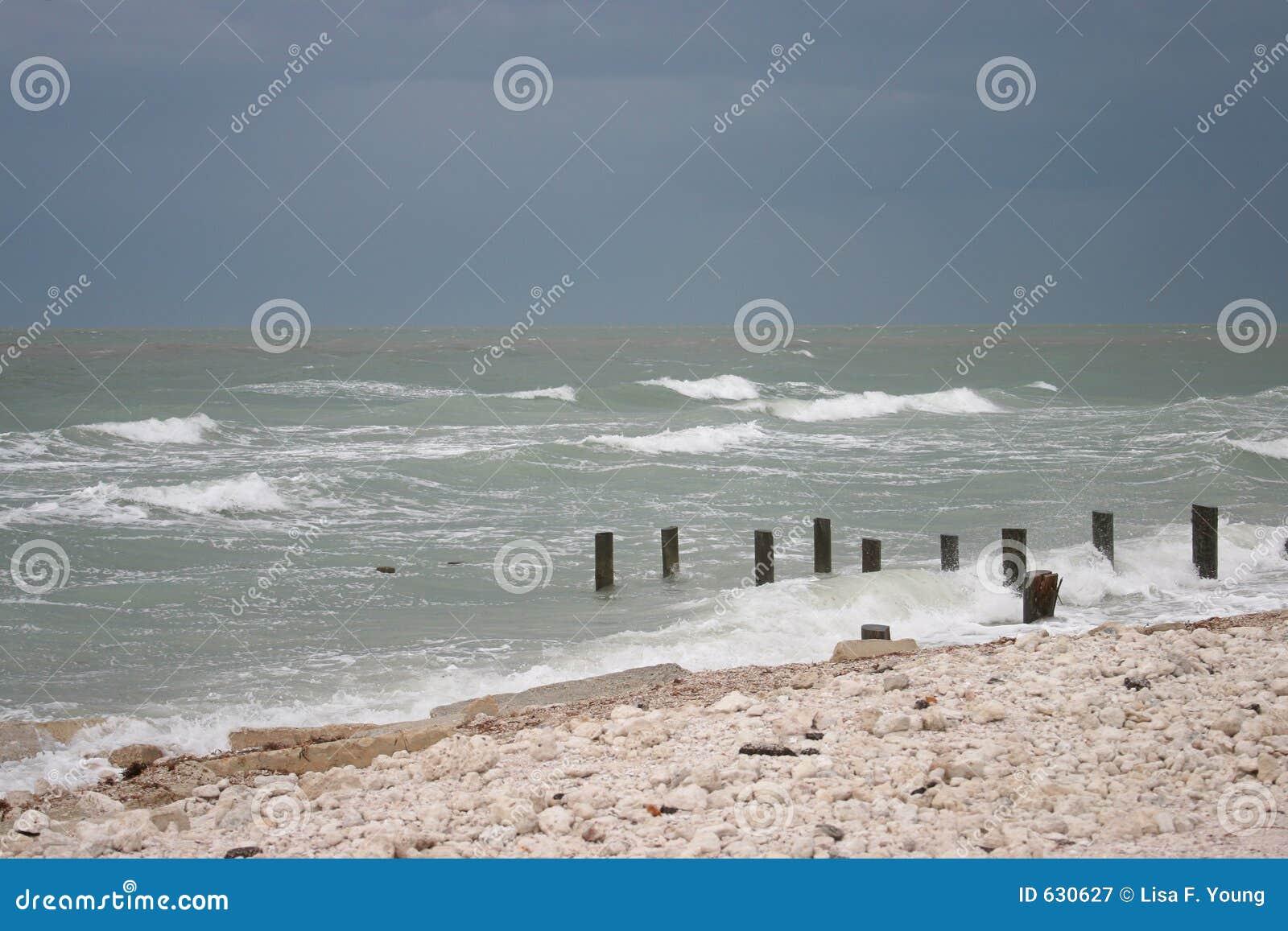 Download ураган пляжа стоковое изображение. изображение насчитывающей backhoe - 630627