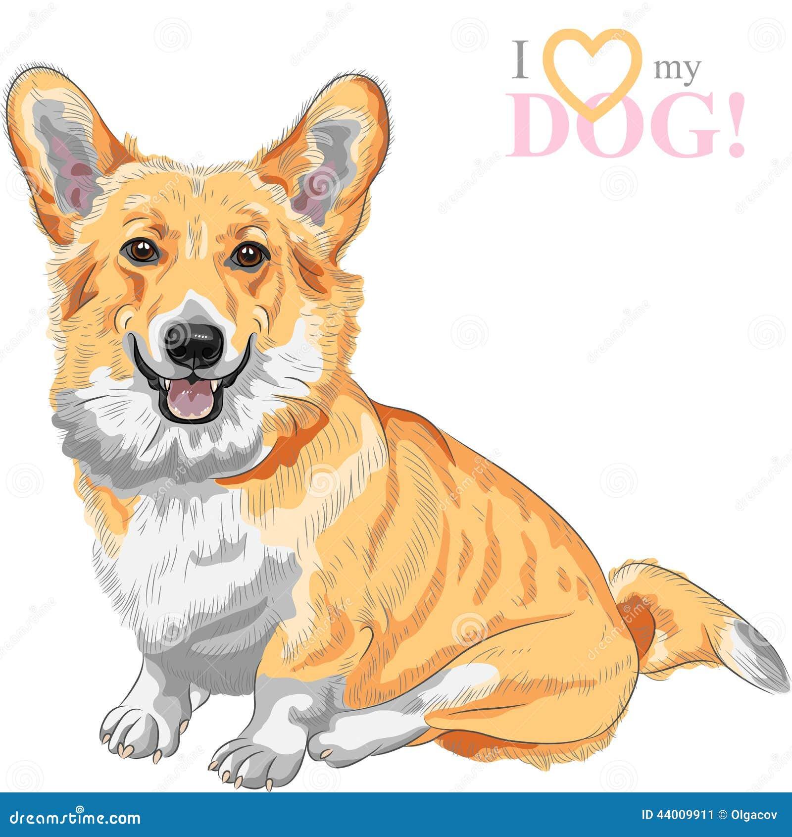 Усмехаться corgi Welsh Пембрука собаки эскиза вектора