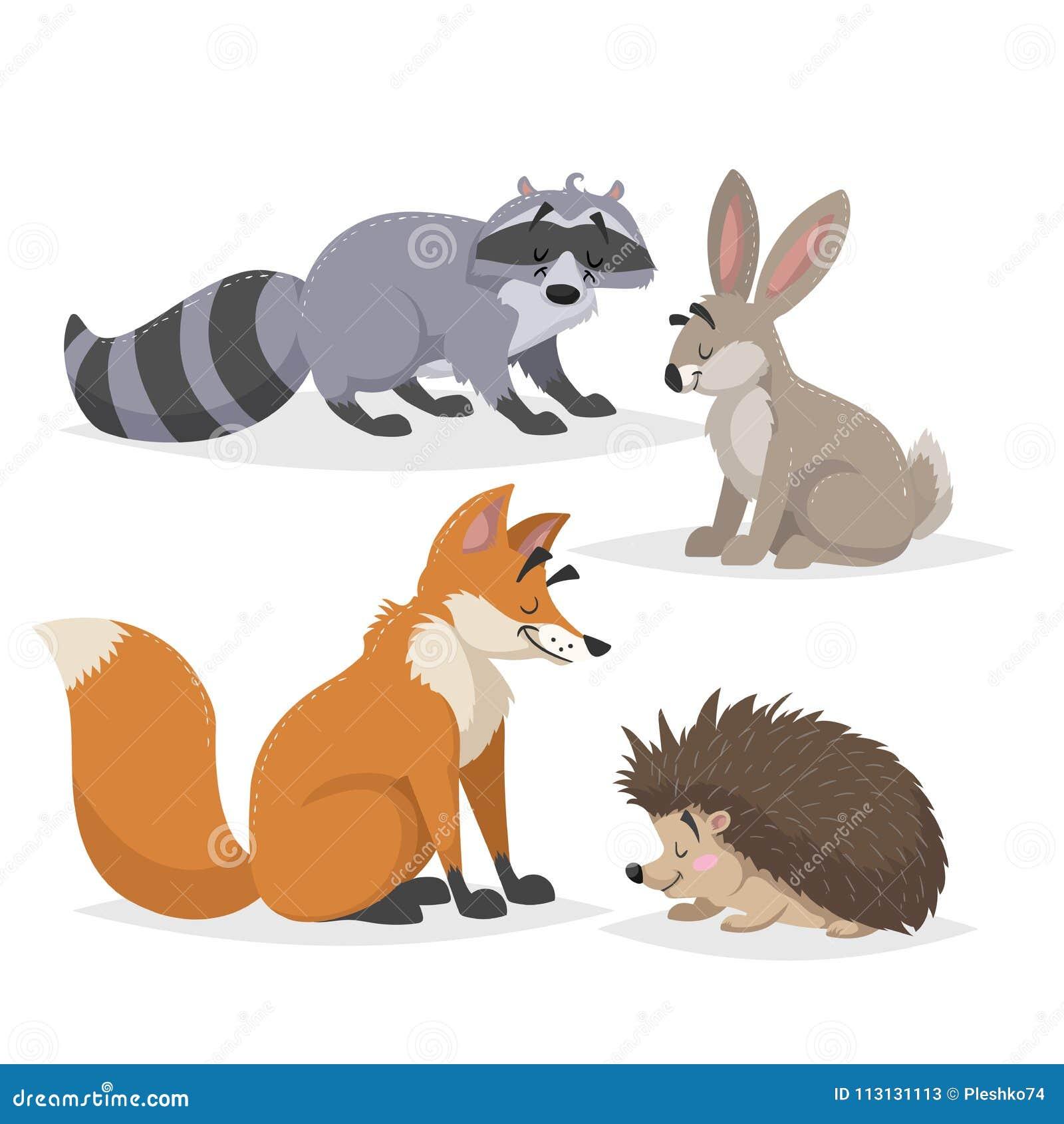 Установленные животные леса Енот, зайцы, еж и красная лиса Счастливый усмехаться и жизнерадостные характеры Иллюстрации зоопарка