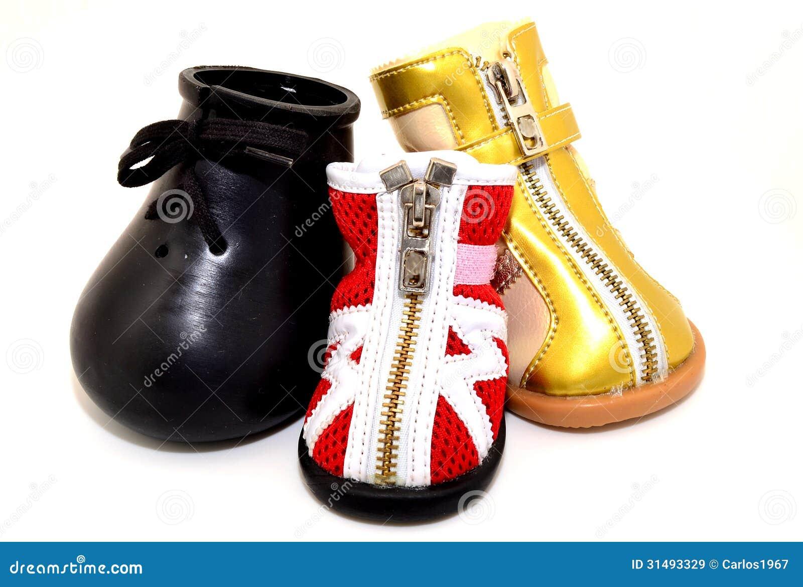 Установленные ботинки собаки