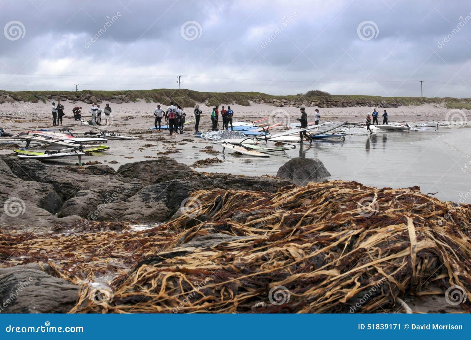 Утесы и морская водоросль Windsurfers
