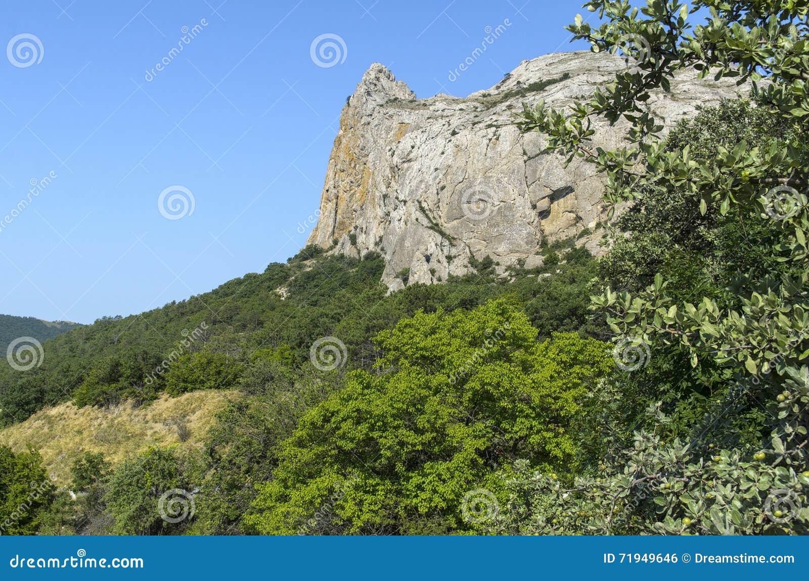 Утес окруженный растительностью Крымом