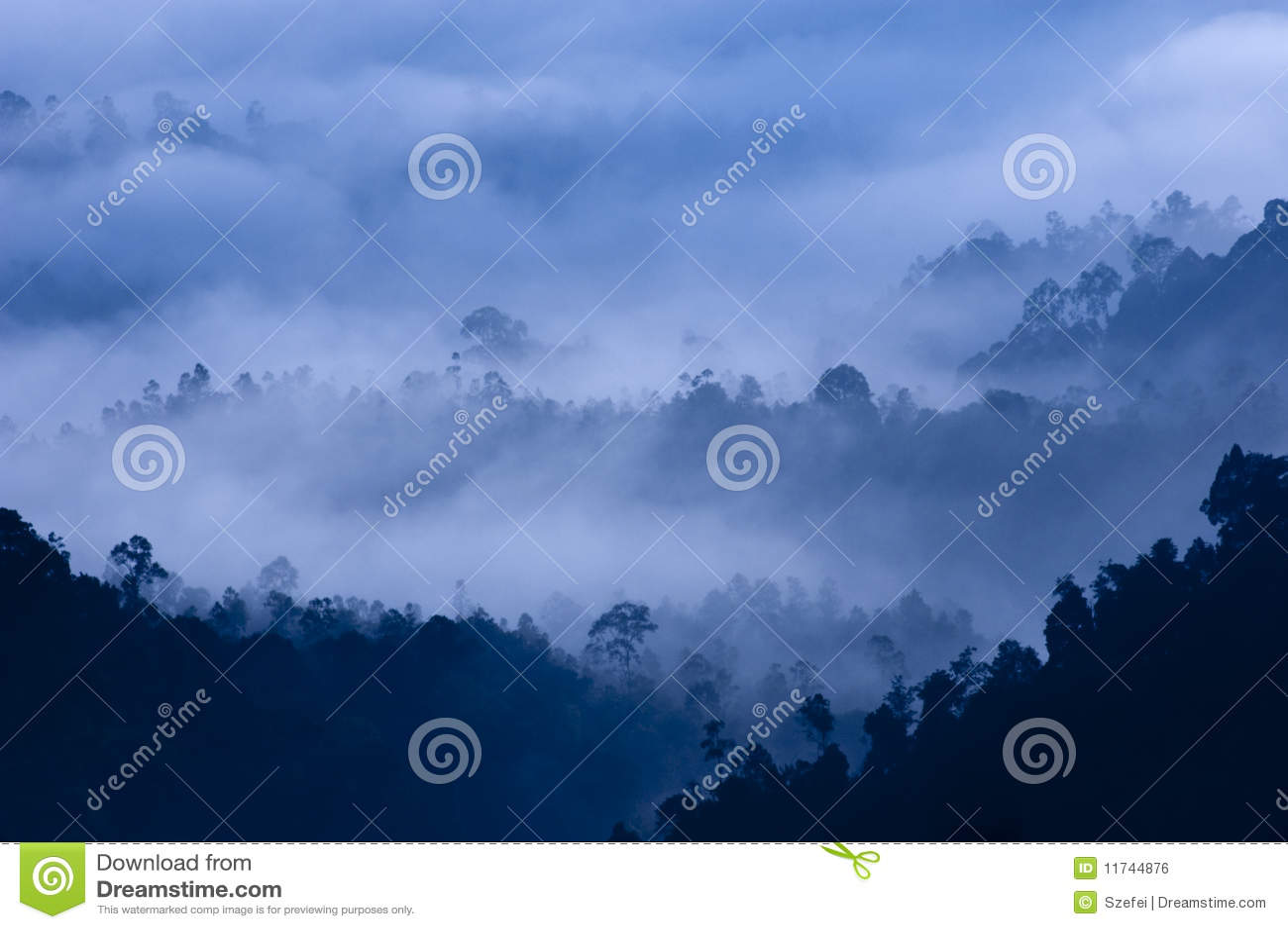 утро тумана