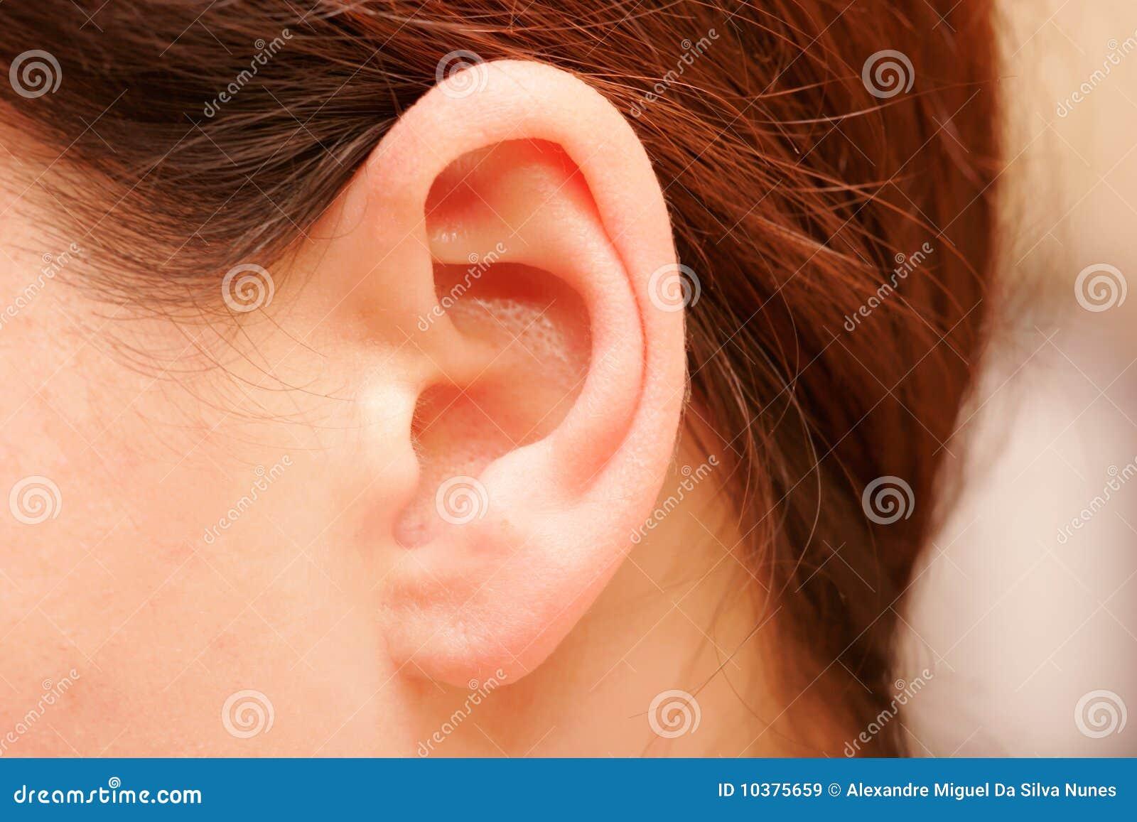 Как уменьшить мочки ушей в домашних условиях