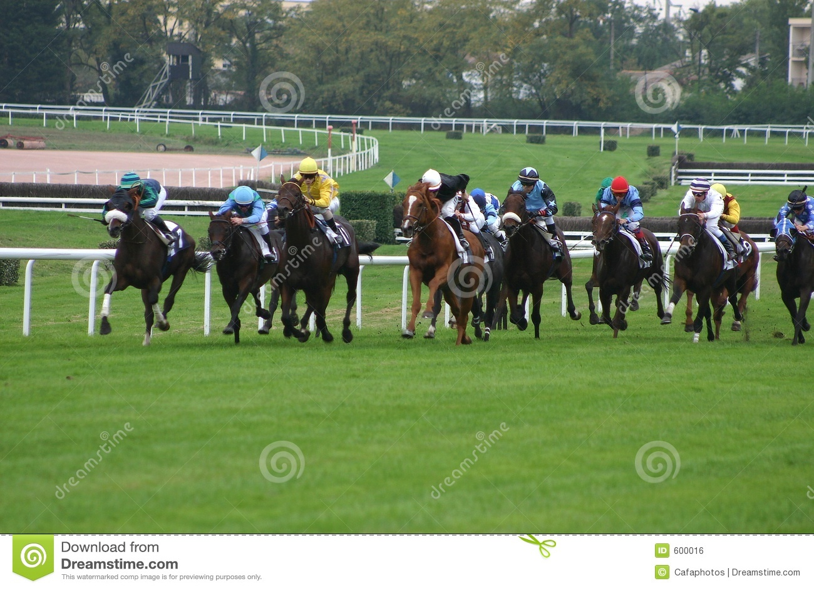 участвовать в гонке лошадей