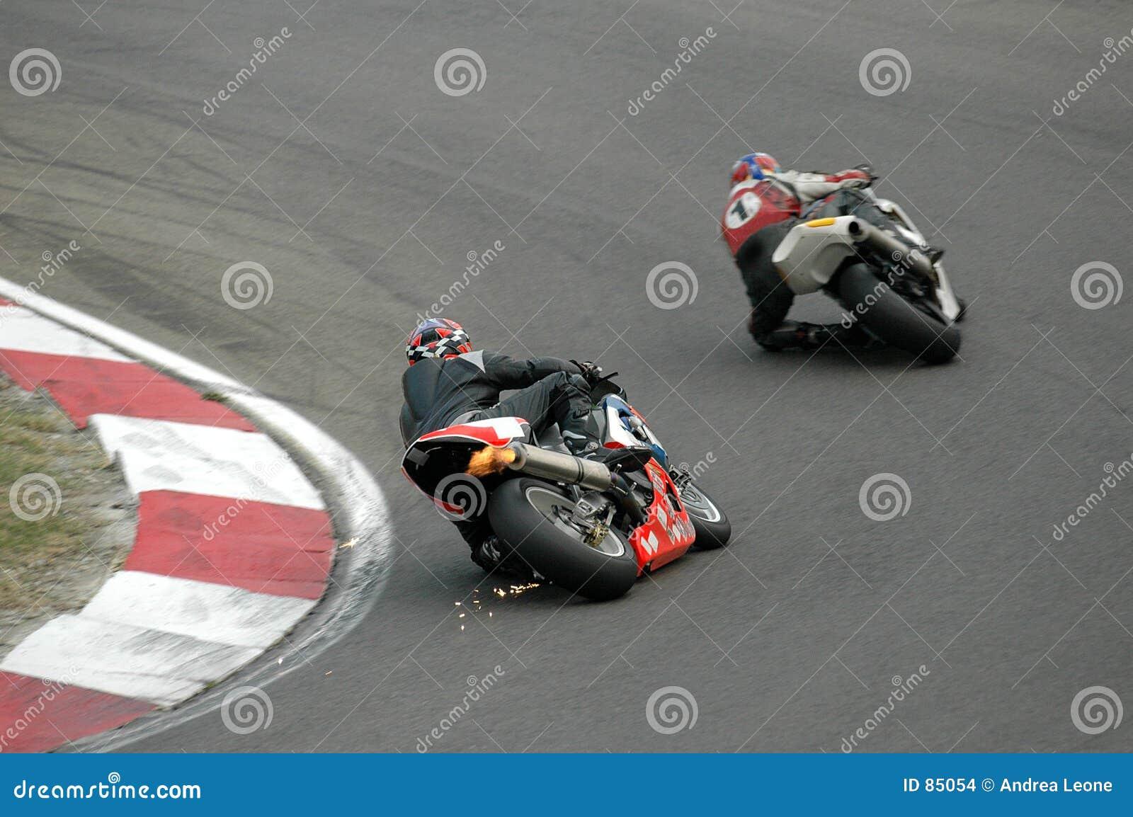 участвовать в гонке мотовелосипедов
