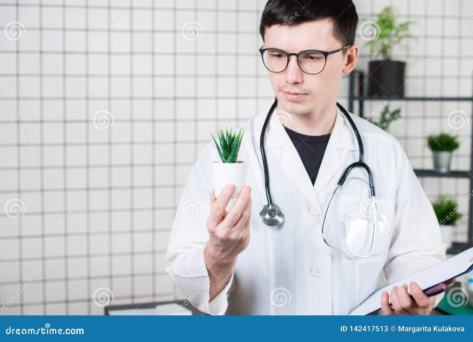 Ученый проводит эксперименты с зеленым растением