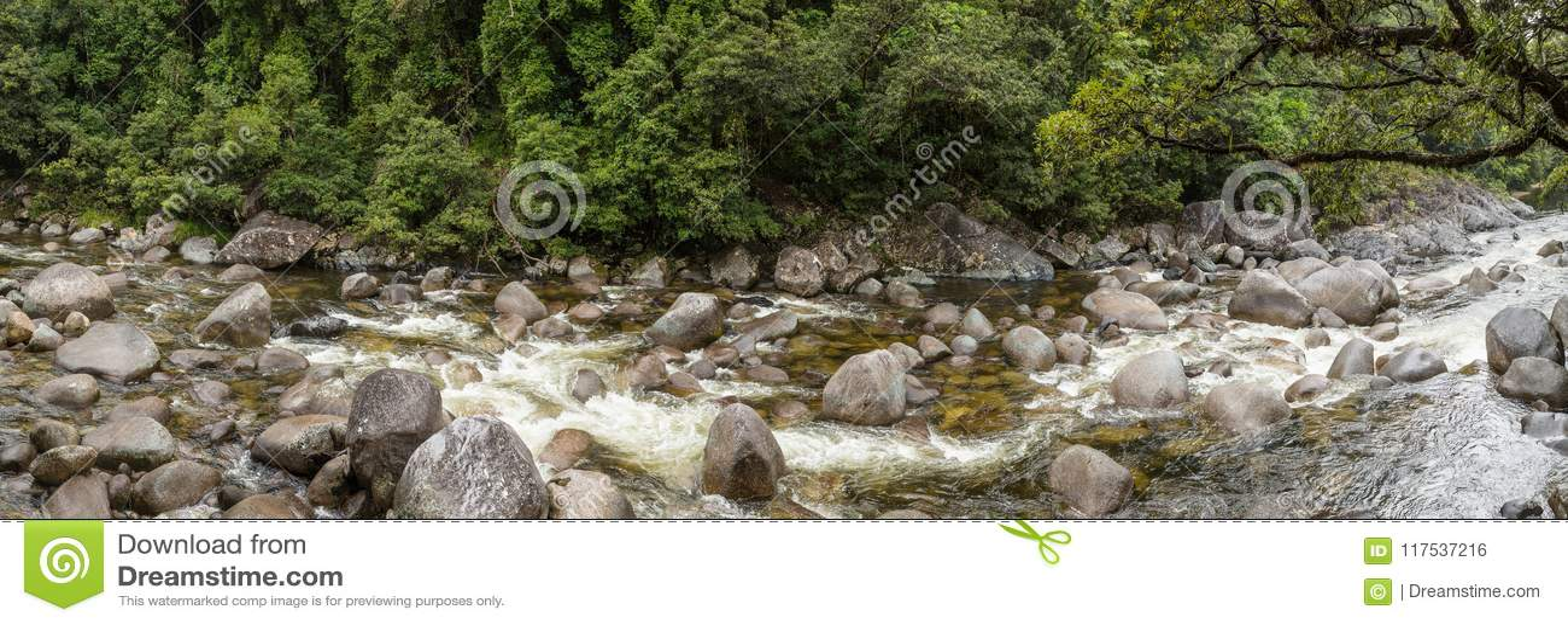 Ущелье n Mossman тропический лес Daintree, Квинсленд Австралия