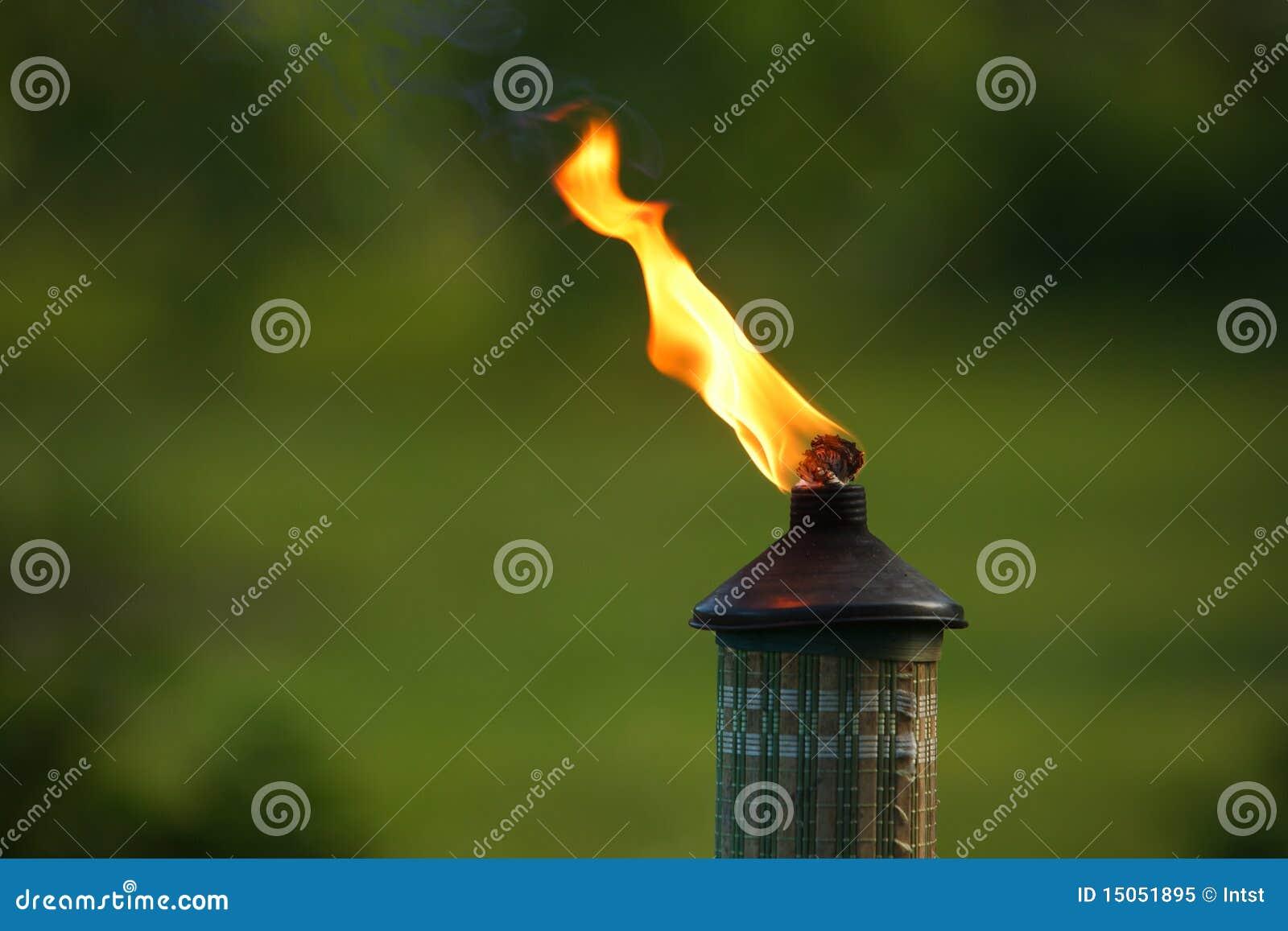 факел сада пламени