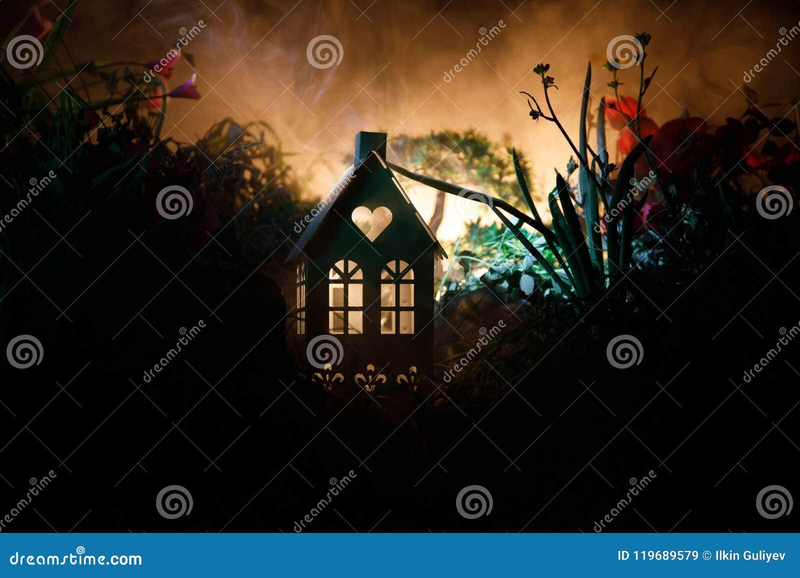 Фантазия украсила фото Малый красивый дом в траве с светом Старый дом в лесе на ноче с луной Селективный фокус