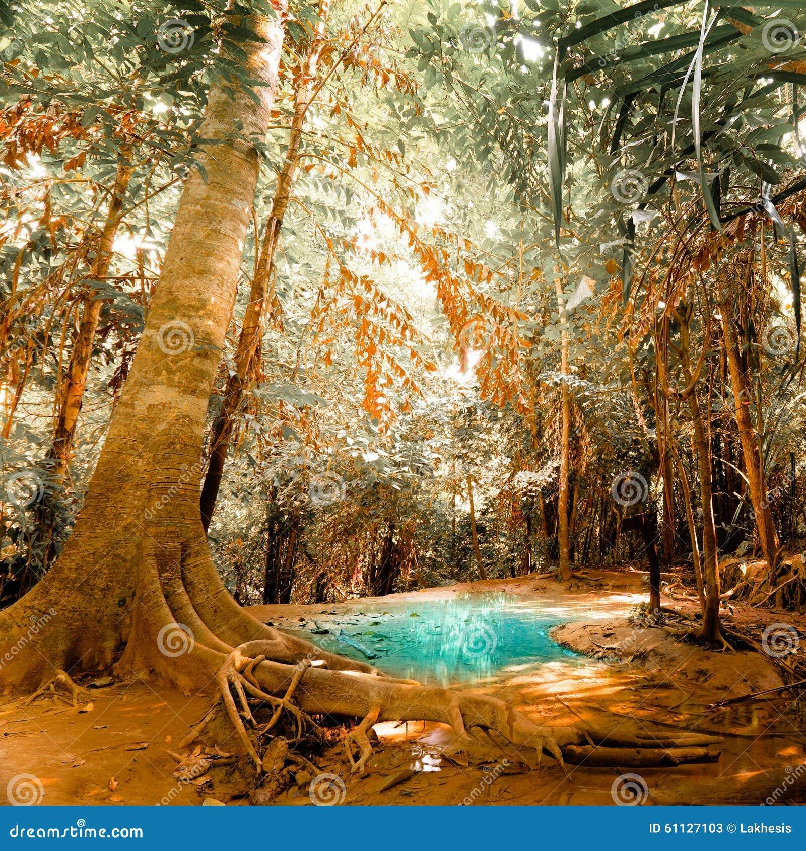 Фантазия jangle ландшафт с водой пруда бирюзы