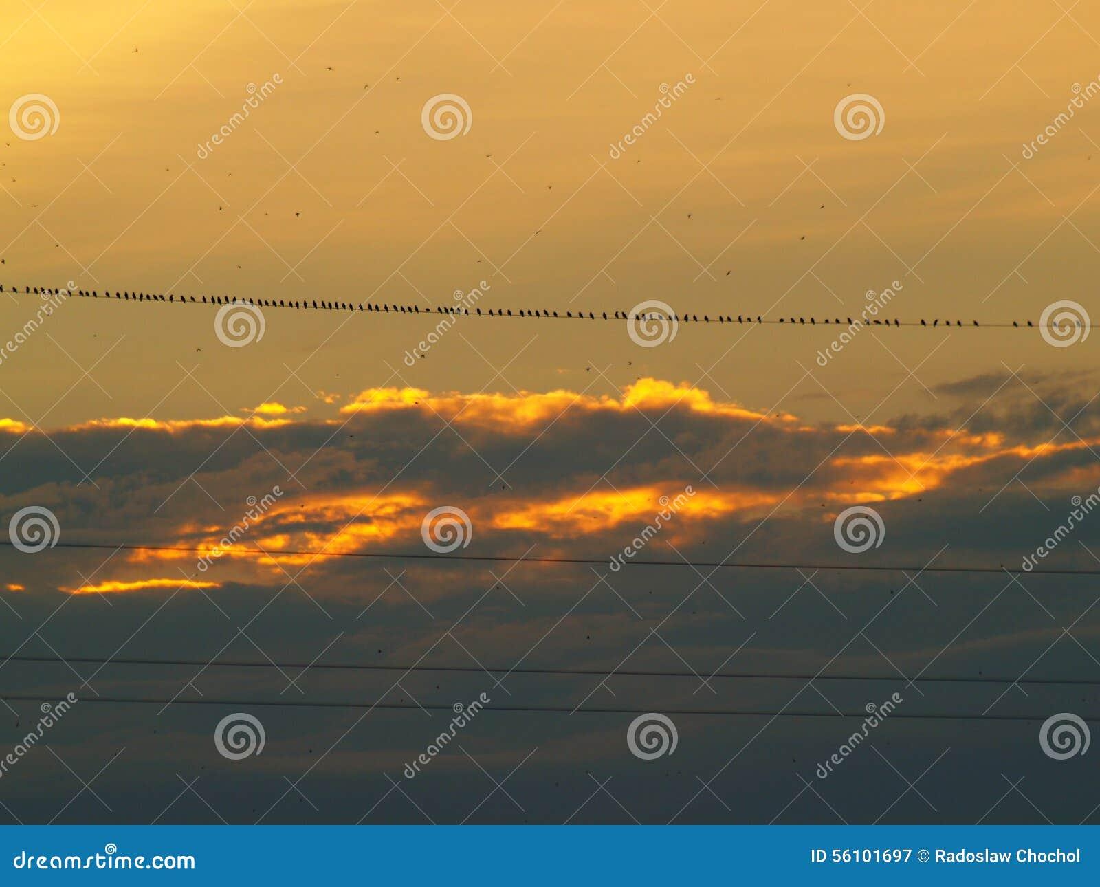 Феноменальный заход солнца