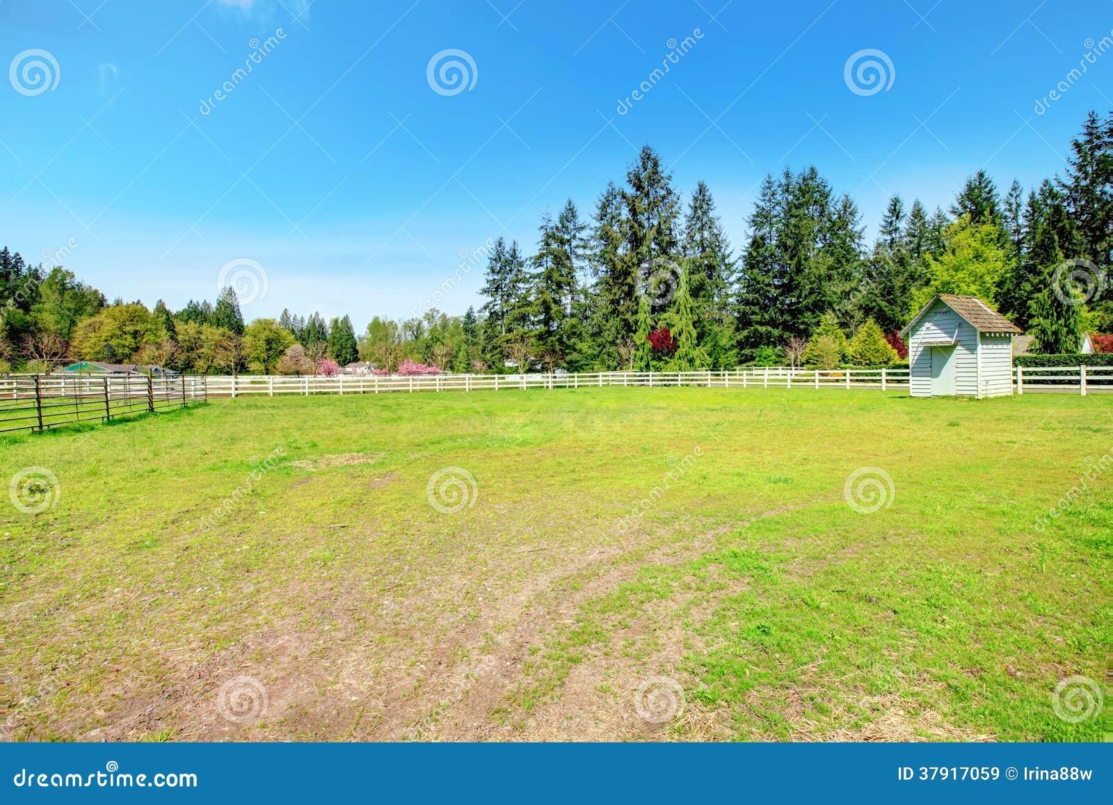 Ферма лошади сельской местности