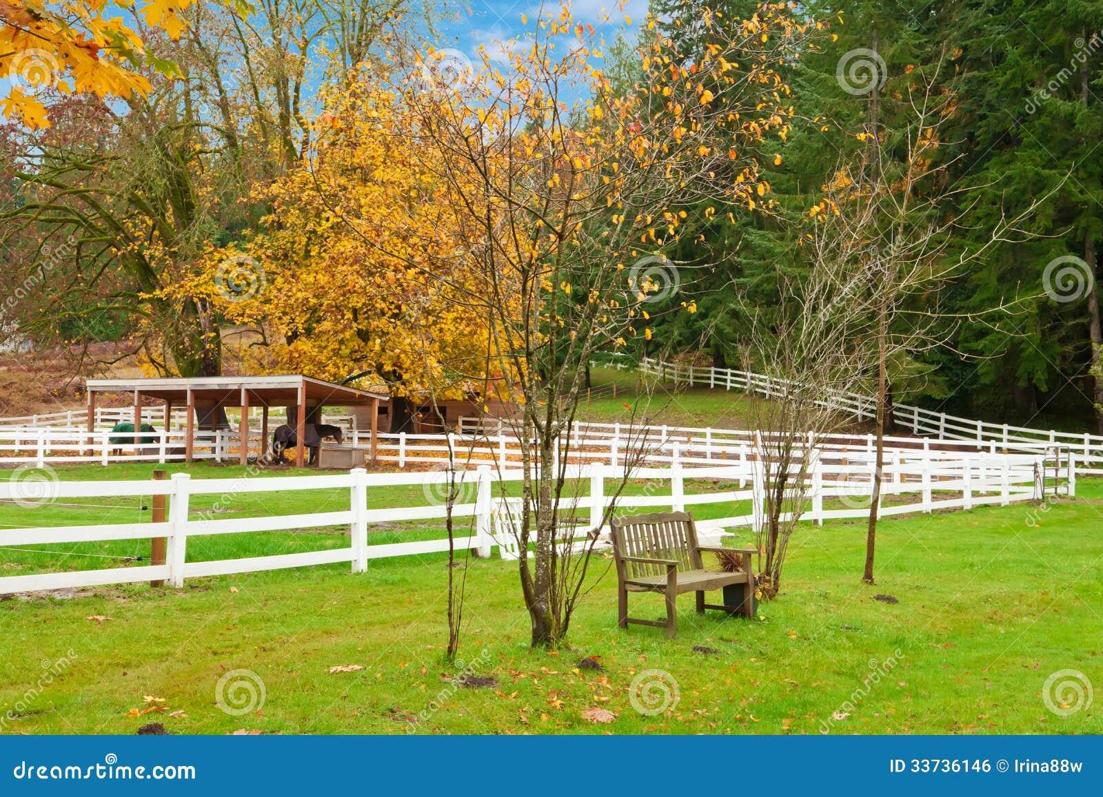 Ферма лошади с белой загородкой и листьями падения цветастыми.