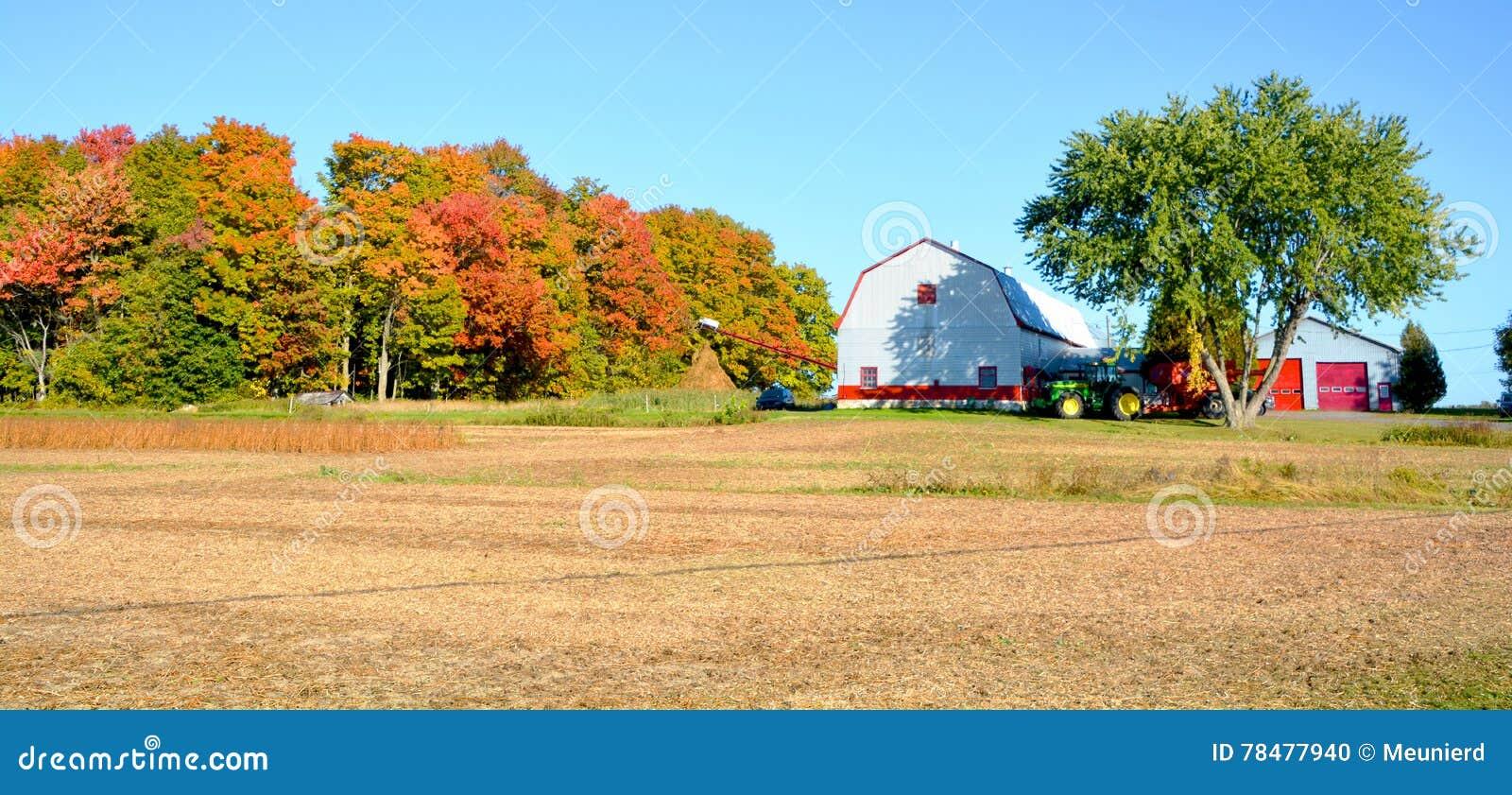 Ферма поля сои