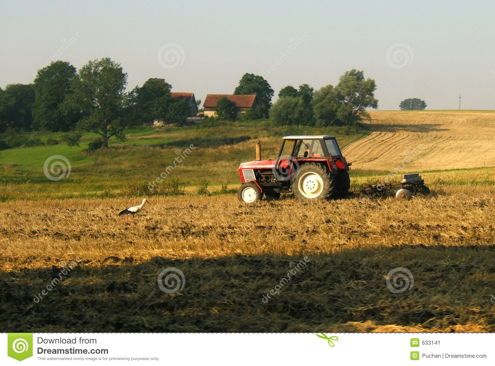 Download ферма стоковое изображение. изображение насчитывающей countryside - 633141