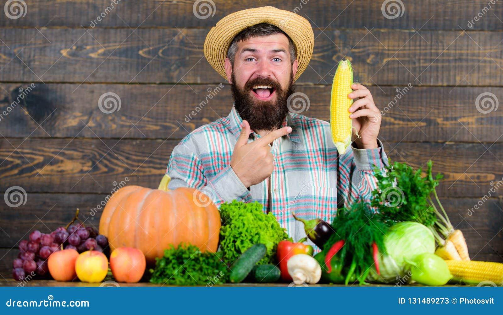 Фермер с возникновением сельчанина доморощенного фермера сбора деревенским Вырастите органические урожаи Владение фермера человек