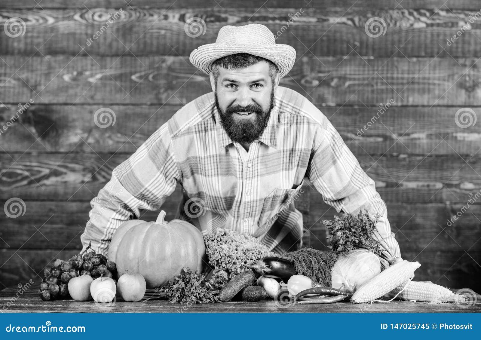 Фермер человека бородатый с предпосылкой загородного стиля овощей i По месту, который выросли концепция урожаев