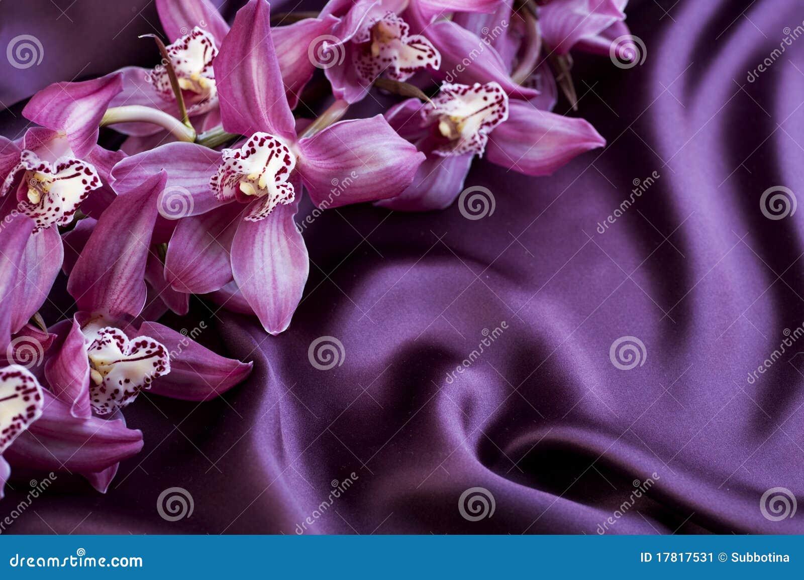 фиолет орхидей silk