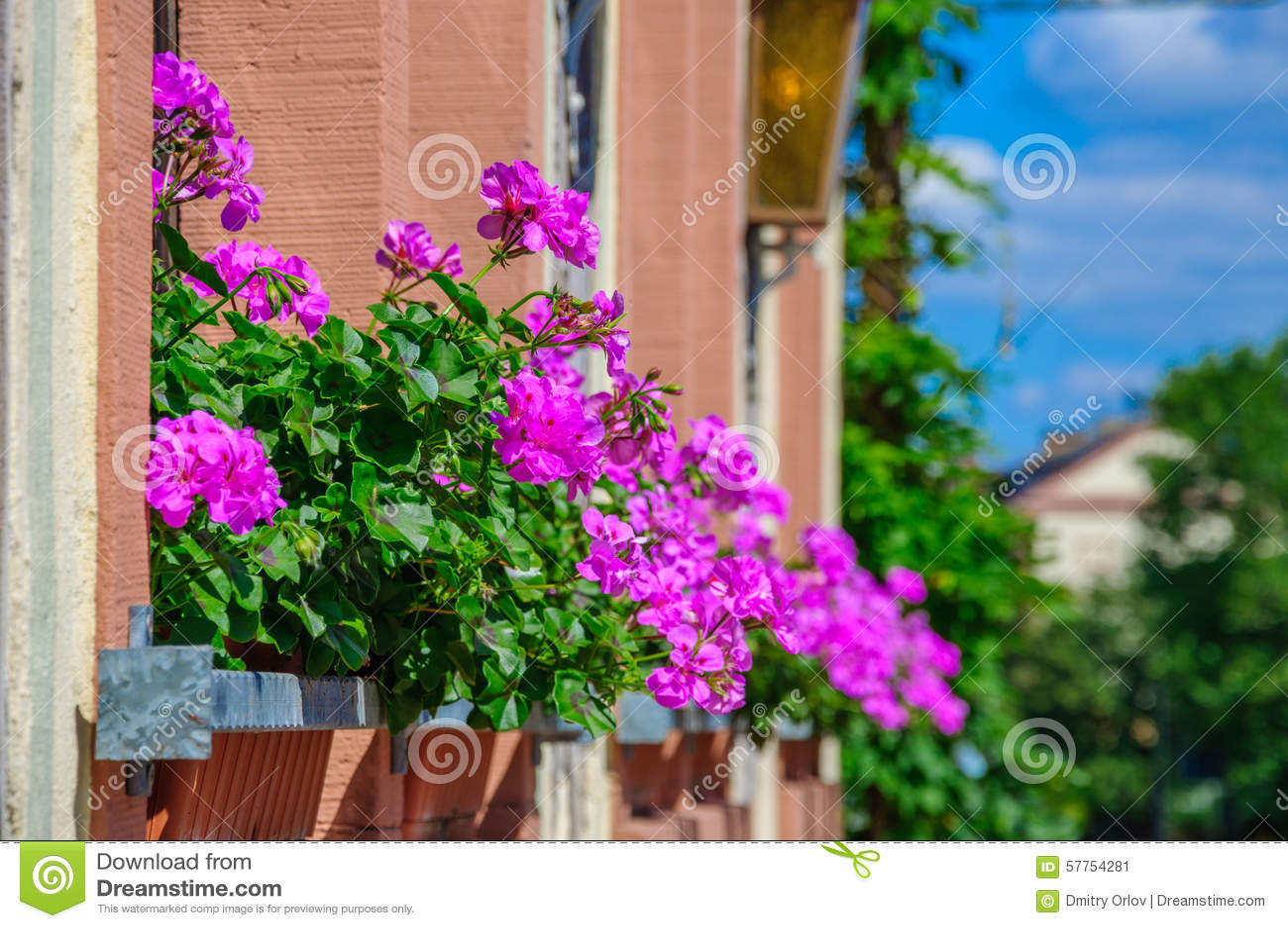 ? ? ? ? ? ? ? ? stock photos - freeimages.com.
