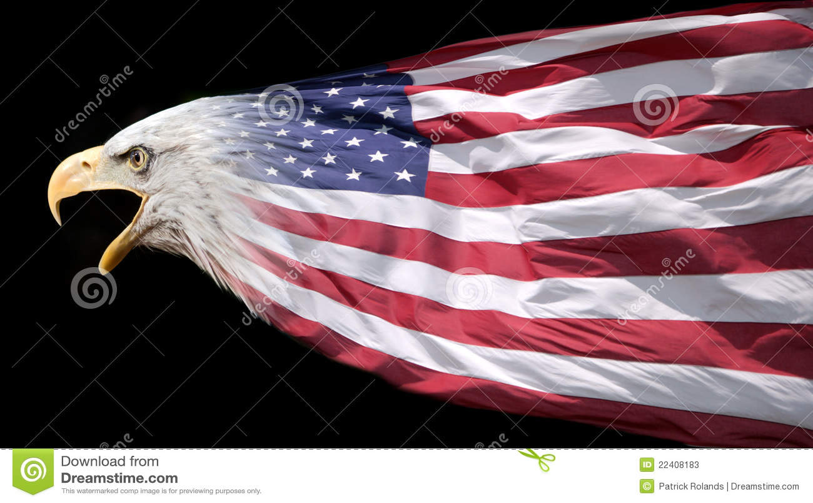 флаг орла патриотический