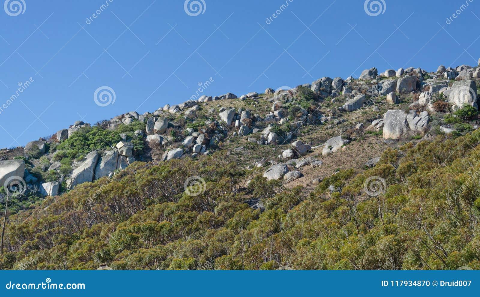Фланк холма