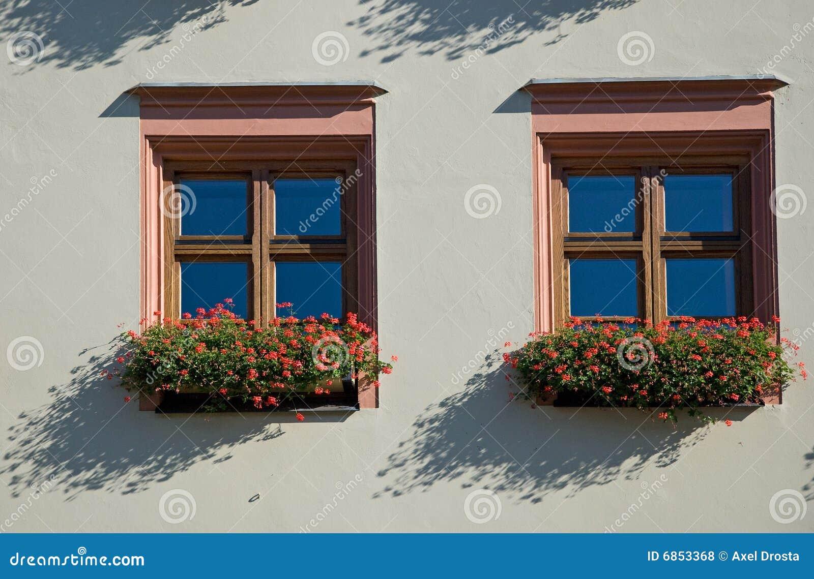 флористические окна
