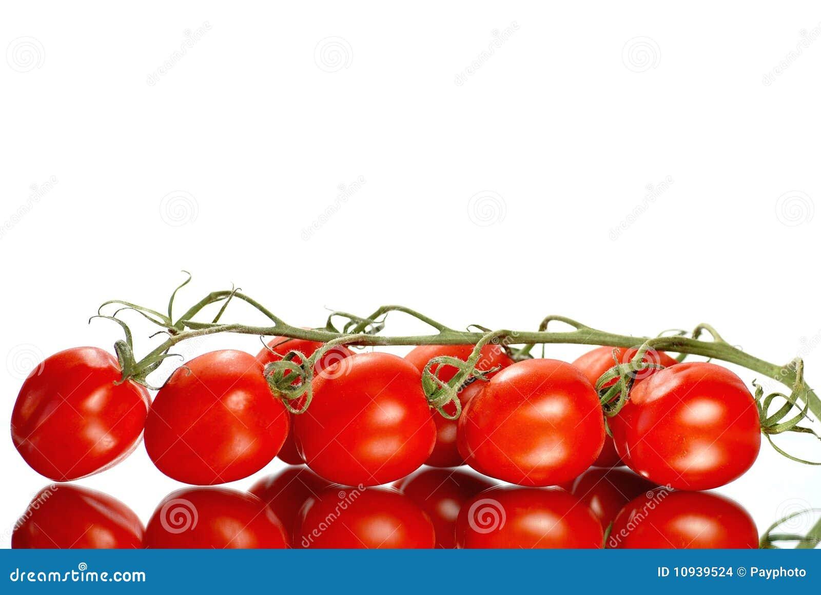 форма рамки свежая отраженная их томаты