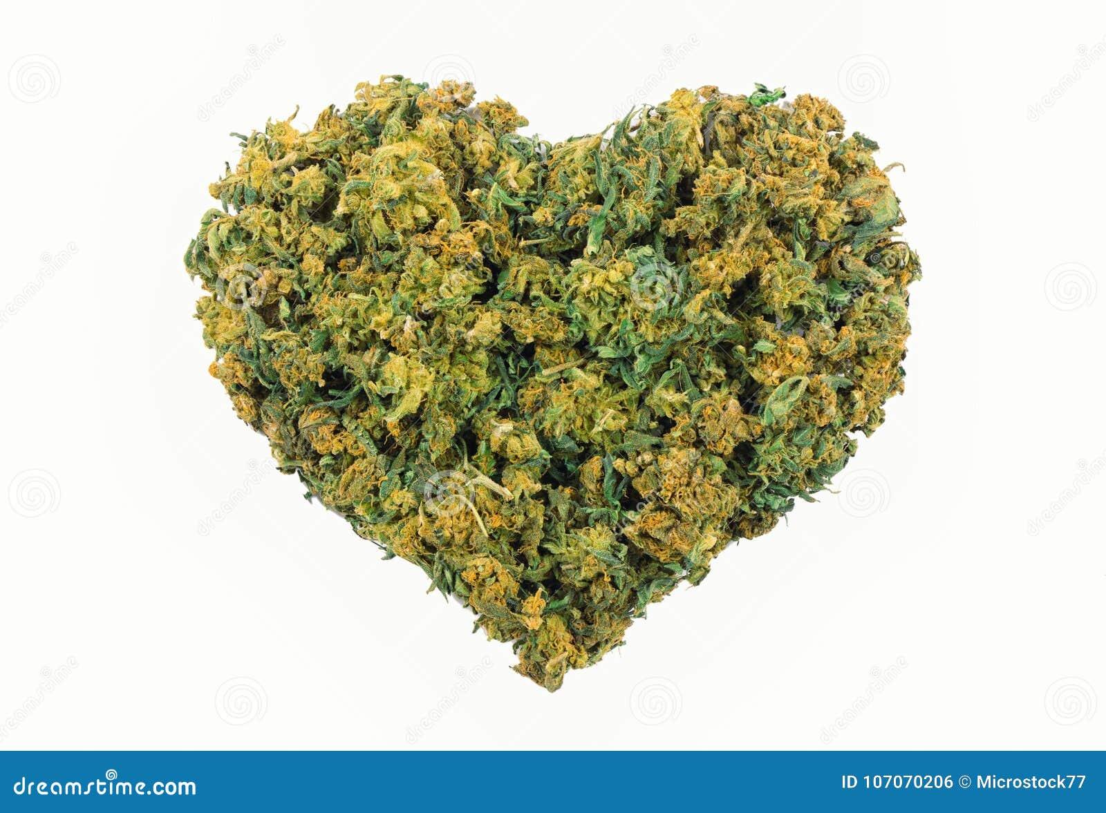 Сердце и марихуана как и где купить семена гидропоники