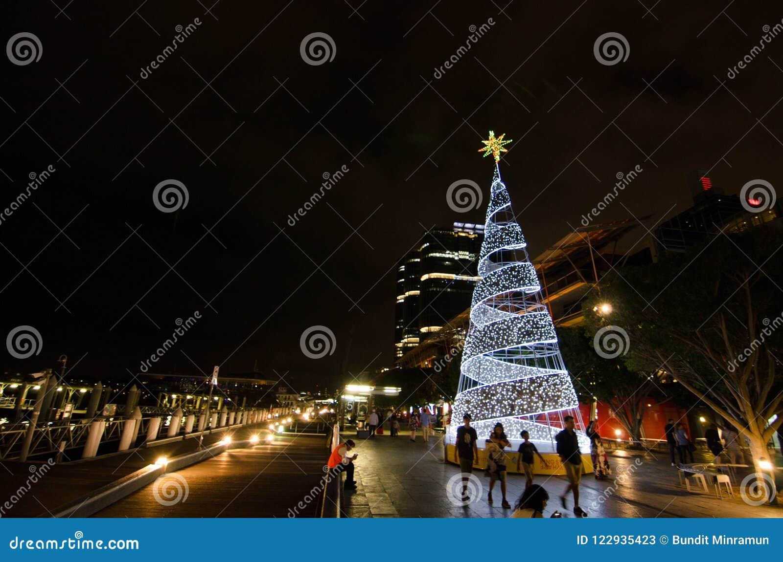 Фотография ночи яркой белой рождественской елки освещает на причале улицы короля, гавани милочки