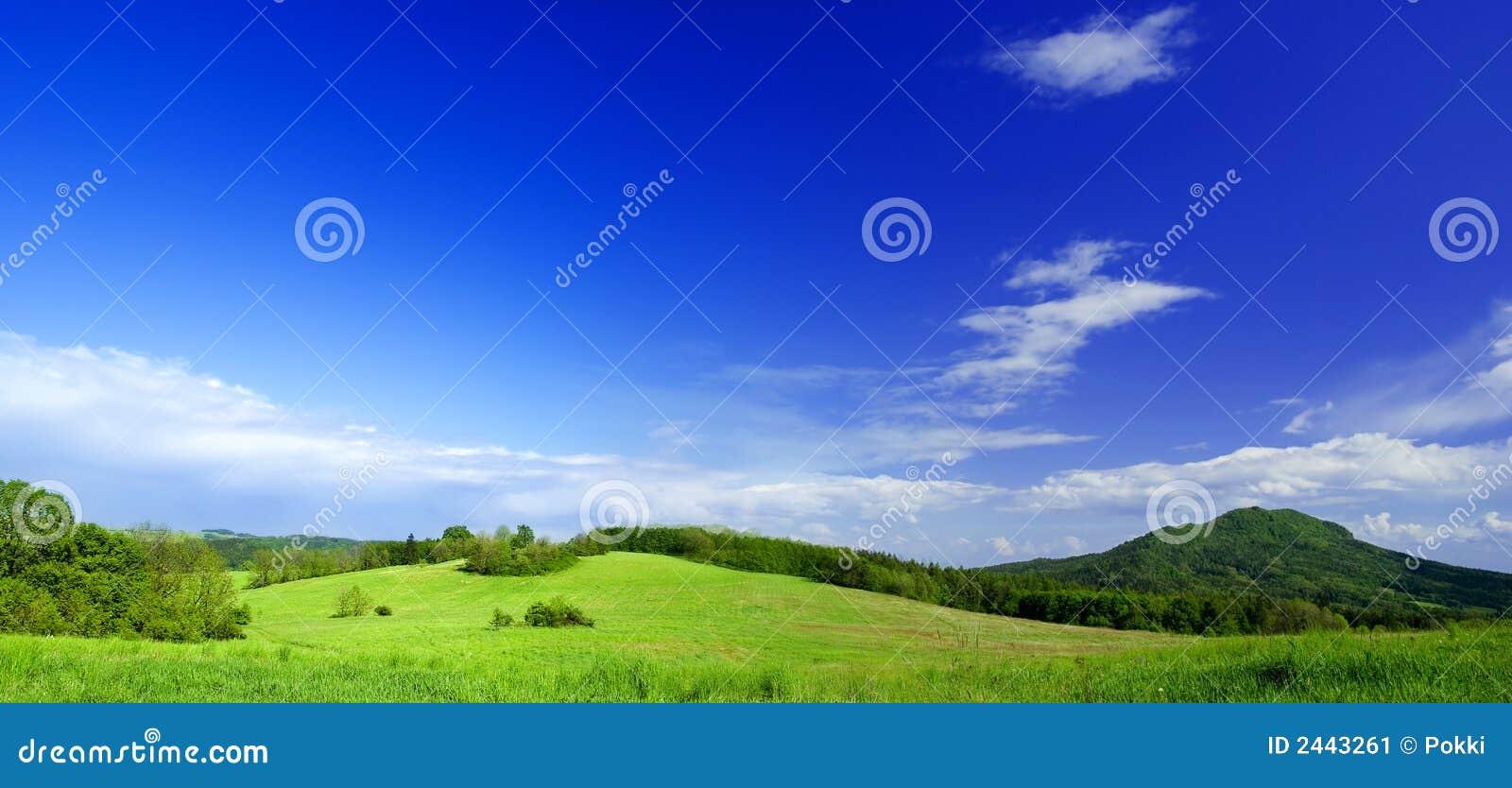 фото панорамы лужка