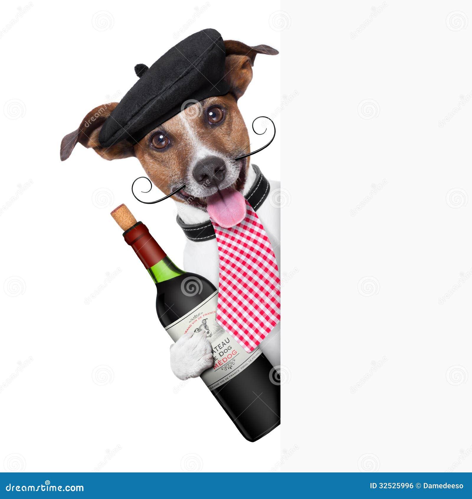 Французская собака