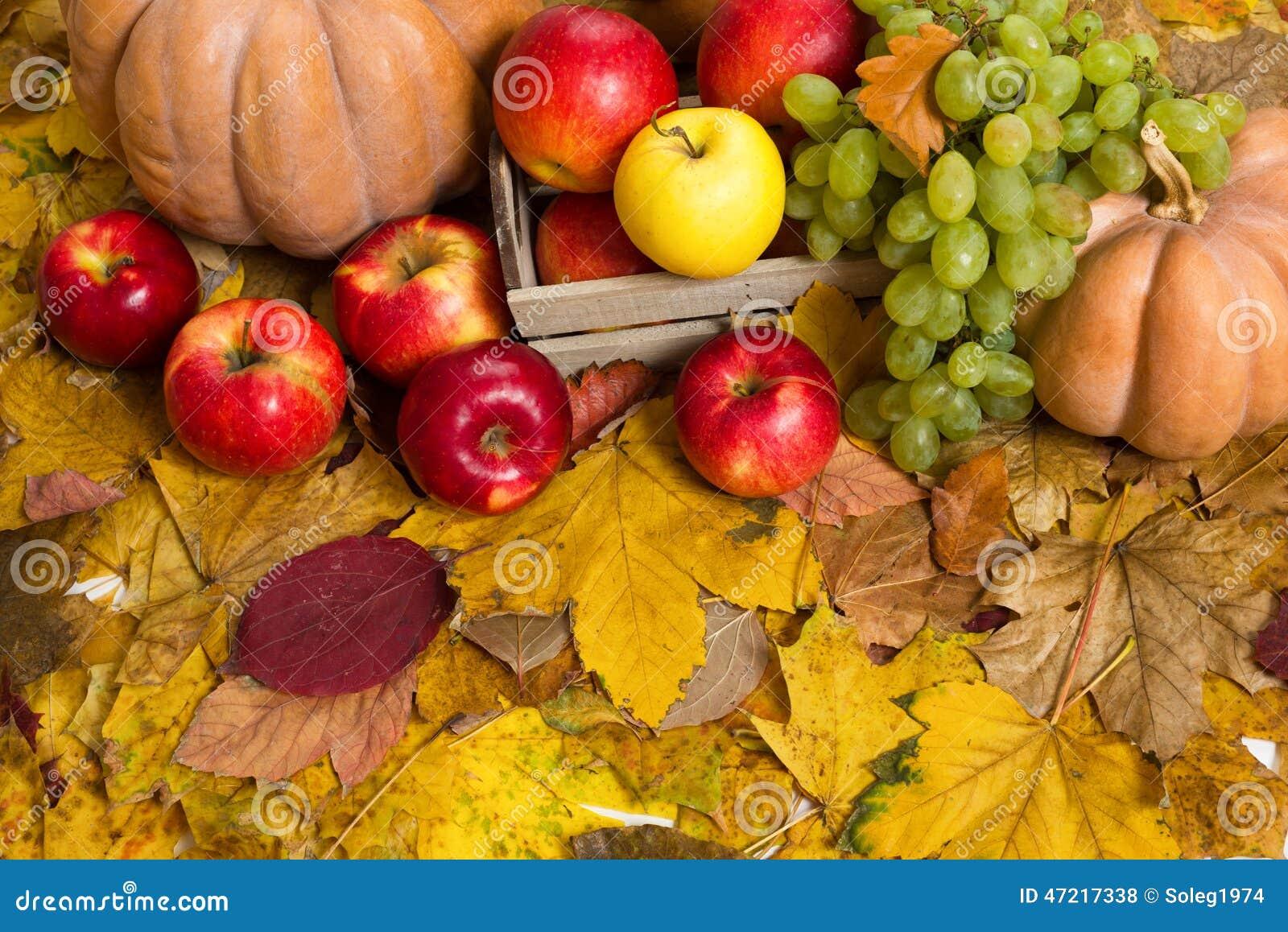 картинки осень овощи