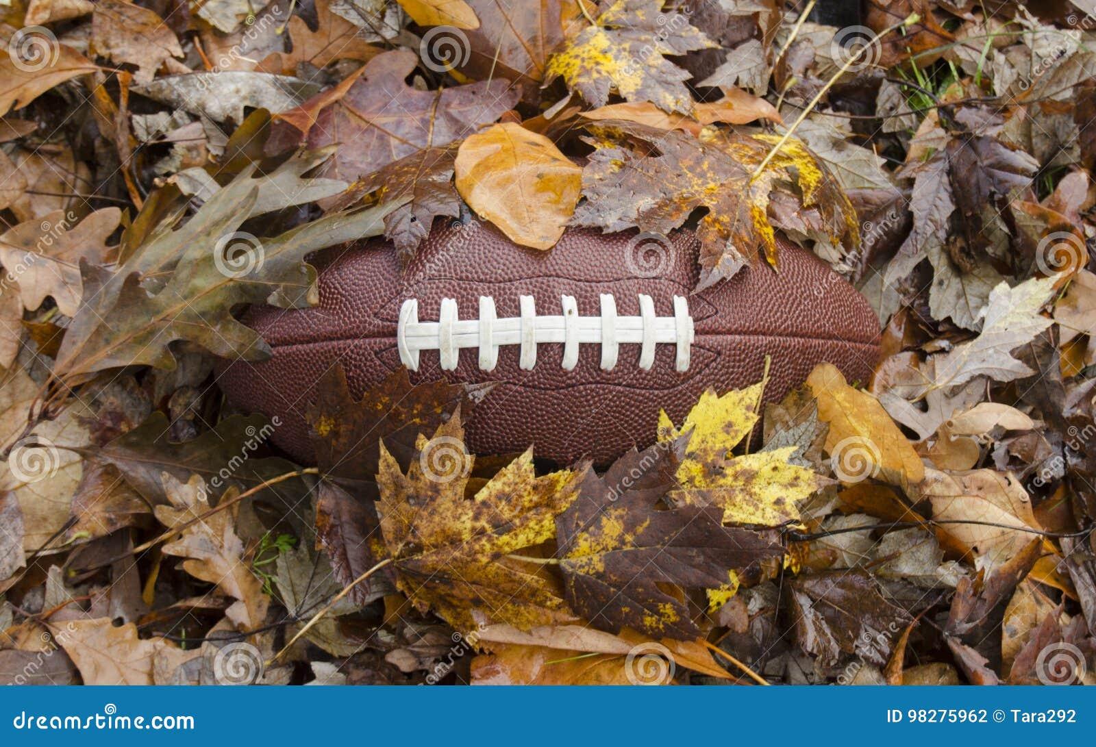 Футбол похороненный в листьях падения
