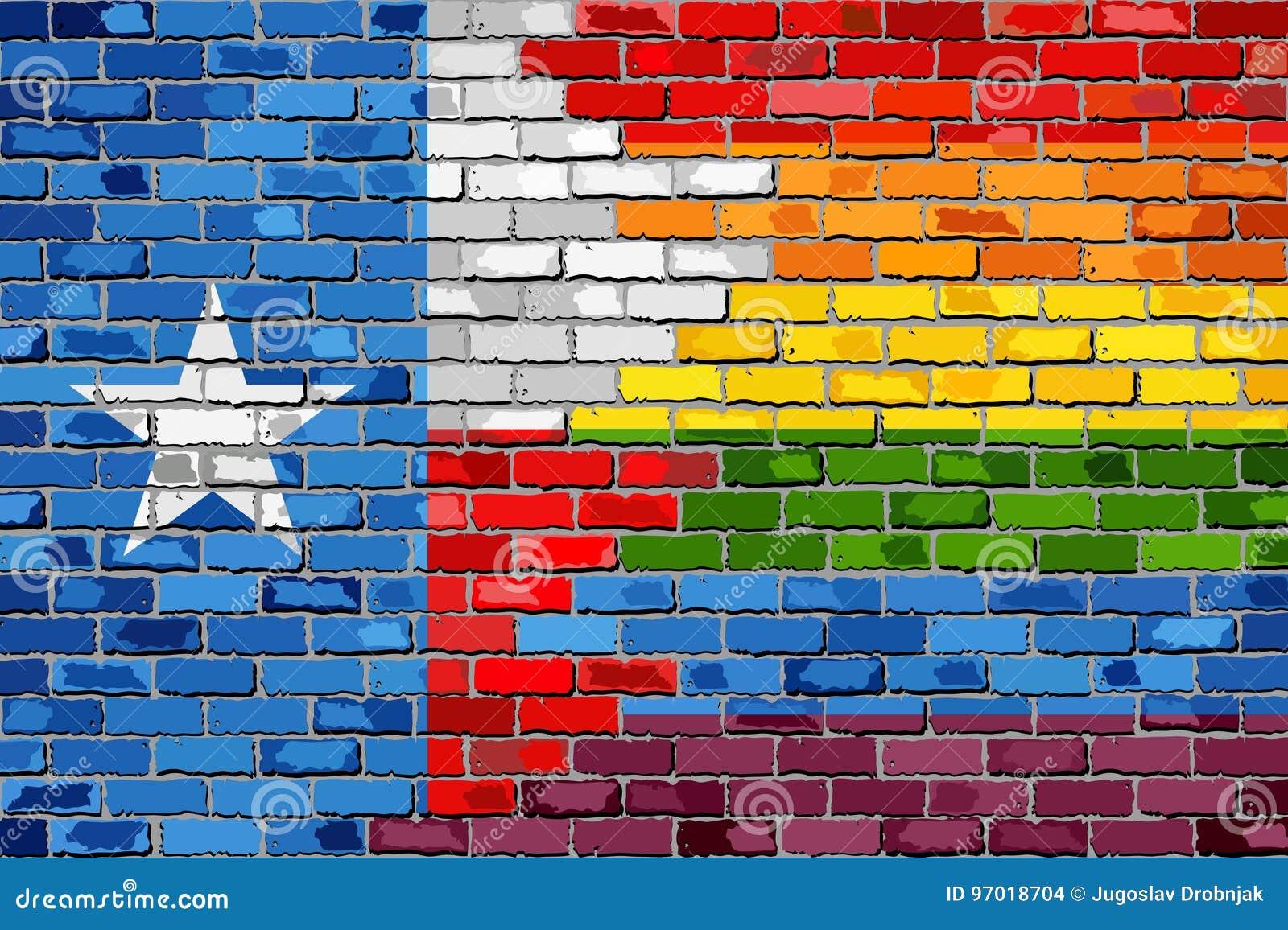 Флаги кирпичной стены Техаса и гомосексуалиста