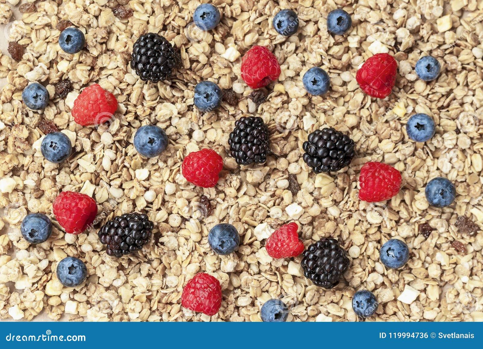 Хлопья, granola, muesli и ягоды овса Поленика, голубики, конец-вверх ежевик на предпосылке muesli Здорово
