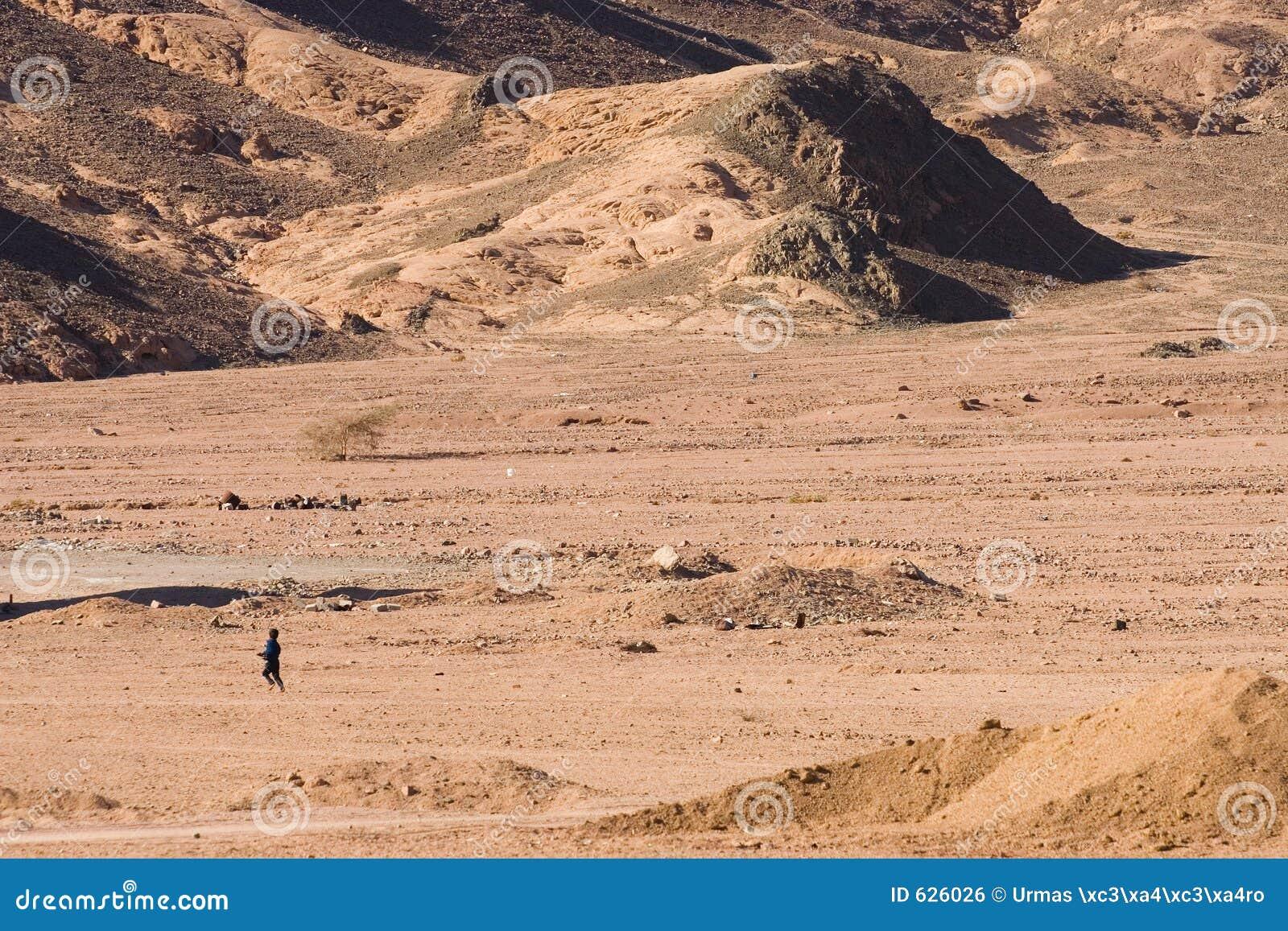 Download ход пустыни стоковое фото. изображение насчитывающей египет - 626026